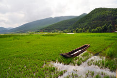Boat on Meadow with Rich Water Stock Photo