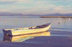 Boat in Mexico. The fishing boats in Mexico stock photo