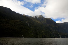 Boat on Milford Sound Stock Photography