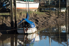 Boat moored and covered on the river Stock Image