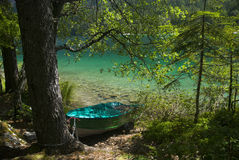 Boat moored in tovel's lake. View of a boat moored in a beautuful lake in Italy called Tovel Stock Photography