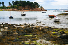 Boat mooring during low tide Royalty Free Stock Photography