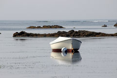 Boat on a Mooring Stock Image