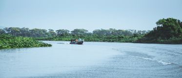Boat navigating on waters of Pantanal with tourists aboard. Mato Grosso do Sul, Brazil - September 12, 2017:  Boat navigating on waters of Pantanal with tourists Royalty Free Stock Images