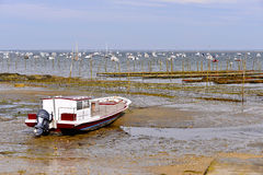 Boat and oyster bed of Lège-Cap-Ferret Royalty Free Stock Photography