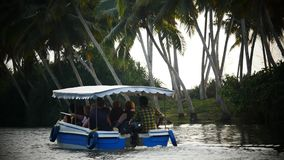 Boat and Palm tree backwater in India stock video