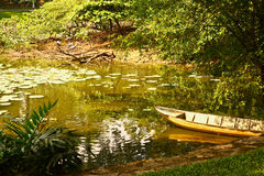 Boat on park asian pond with water lily Royalty Free Stock Photo