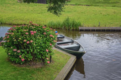 Boat parked on the canal near the beautiful hydrangea bush. Stock Images