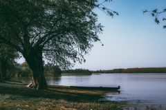 Boat Parked on River Shore Under the Tree. Boat Parked on River Shore Royalty Free Stock Photo