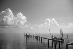 Boat pier. A boat pier that looks like it hasn't been used in quite some time except for the birds Royalty Free Stock Image