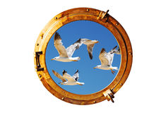 Boat porthole with seagull Royalty Free Stock Images