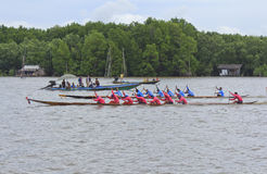 Boat Racing Royalty Free Stock Photography