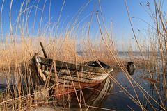 Boat in reed Royalty Free Stock Photography