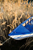 Boat and reed Stock Photos