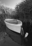 Boat among reeds Stock Image