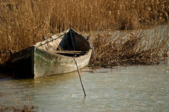 Boat in reeds Royalty Free Stock Images