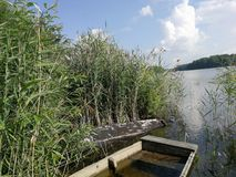 Boat in the reeds stock photos