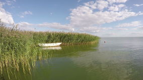 Boat between reeds in the sea bay, time lapse 4K stock video footage
