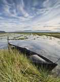 Boat in the Rice Fieds. Old fishing boat tied in a paddy field Royalty Free Stock Images