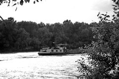 Boat on the river with forest in background. Black and white photography of boat on the river Tisa in Padej Banat Vojvodina Serbia with forest in background Stock Photo