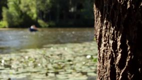 Boat on the river scenery. Close up of tree trunk with moving shadows. Focus slowly changes to people in the boat on the river on a sunny day stock video footage