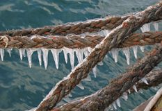 Boat rope Stock Image