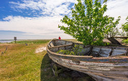 Boat ruine in Sweden. Near coast Stock Photography