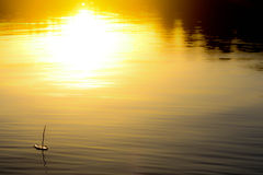 Boat sailing in sea at sunset Royalty Free Stock Photography