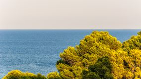 Sea. Boat, sea and trees in Mallorca for holidays in spain Royalty Free Stock Photo
