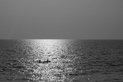 Boat in the Sea. Two fishermen, on their way across the endless sea in Kerala, India Royalty Free Stock Images