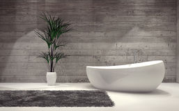 Boat-shaped contemporary bathtub Royalty Free Stock Images