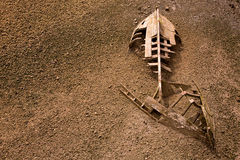 Boat ship skeleton half buried in sand Stock Photos