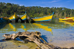 Boat at the shore. In andaman sea Stock Images