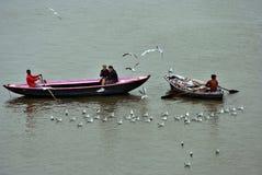 Boat sightseeing stock image