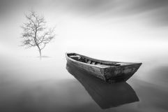 The boat and single tree during haze Stock Photography