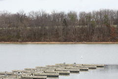 Boat Slips empty. Marina empty of boats during the early winter season in North America.  Boat slips empty Stock Photography
