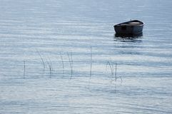 A boat and some reeds on calm lake. Small phishing boat and some reeds on calm water on Annecy, in french alps, France Stock Image