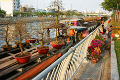 Boat, spring flower, Vietnam Tet Stock Photo