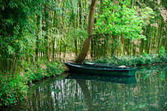 Boat lonely in the woods Royalty Free Stock Photography