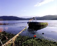 Boat stranded in the Urdaibai estuary, biosphere reserve, Bizkaia. Old fishing boat moored in the estuary and biosphere reserve of Urdaibai in Bizkaia. Basque stock photography