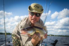 Boat summer fishing for walleye. Happy male angler with summer walleye fishing trophy Royalty Free Stock Photography