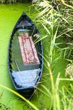 Boat in swamp Stock Images