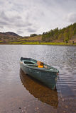 Boat of Tarn Stock Images