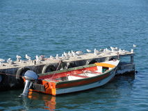Boat tied up to dock at Robben Island Stock Image