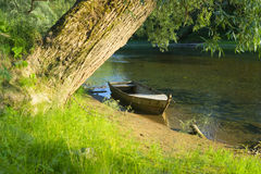 Boat and Tree Stock Images