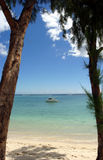 Boat through trees. A boat floats on the Indian Ocean beyond two trees. Taken from the island of Mauritius stock photo