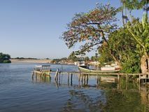 Boat between the trees II. Boat of fishes between the trees - Barreirinhas - Maranhão - Brazil stock photography