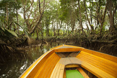 Boat trip through mangrove and rain forests in Borneo Stock Photography