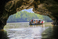 Boat trip. Mangroves trip for travelers Stock Photos