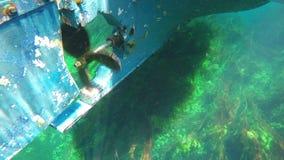 Boat trip, reeds, bizarre underwater of azmak river, turkey. stock video